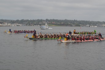 Dragon boat racing. Young, old, semi-pro teams and amateurs from all over the West Coast splashed it out. It was cool and different.